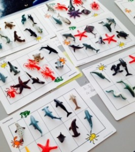 Students used Ten Frames to group their favourite sea creatures